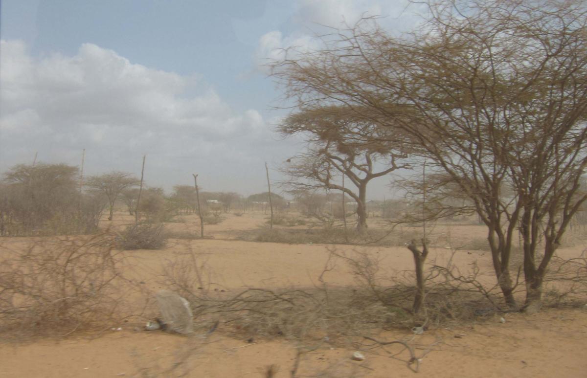 Ajuda d'emergència a Kenya