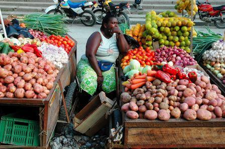 Campanya solidària per donar suport a projectes agropecuaris