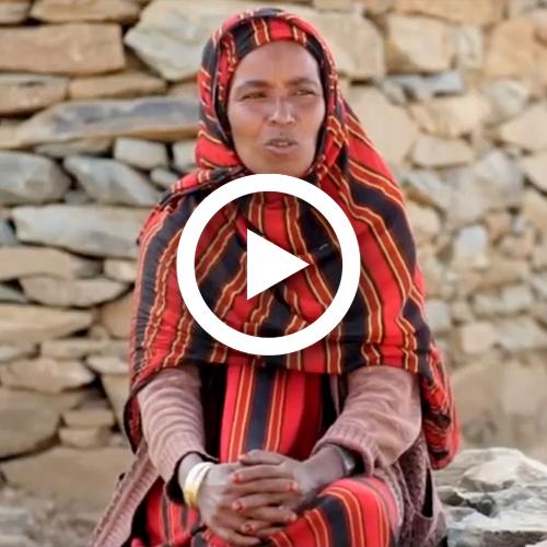 Dia Internacional de la Dona Treballadora 2019