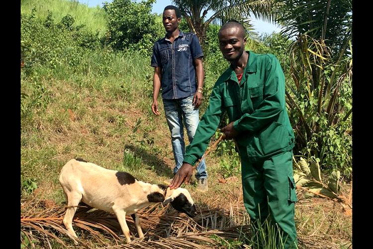 500 jóvenes podrán estudiar en una granja-escuela de Camerún