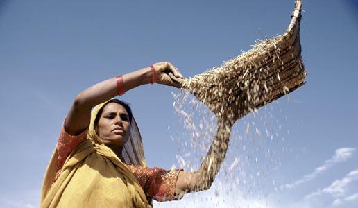 Proyecto social asia ong india desarrollo comunitario for Proyecto social comedor comunitario