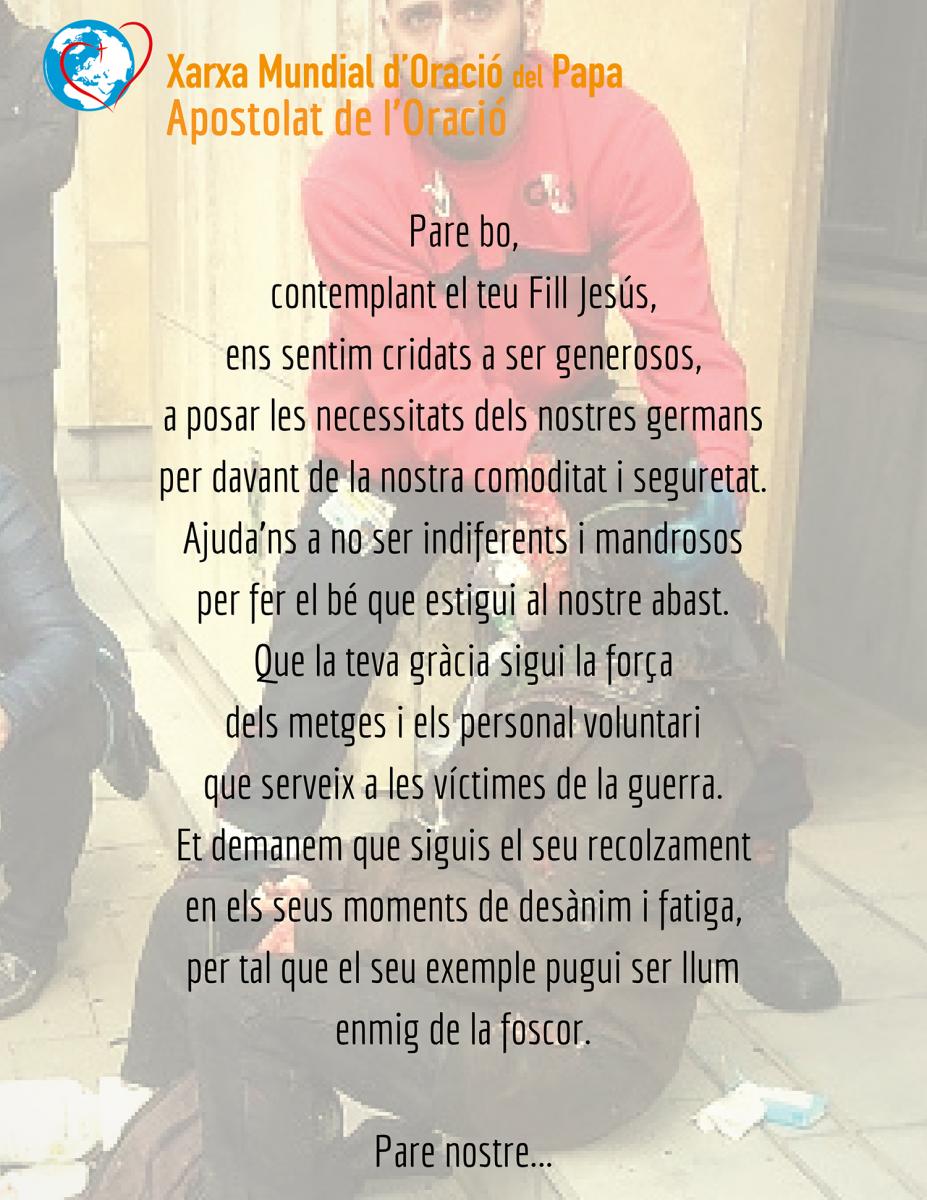 El papa Francesc demana pregàries pel personal sanitari i humanitari de les zones bèliques