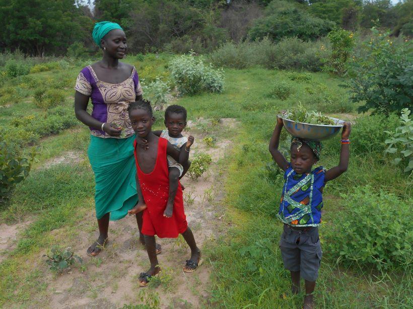 700 mujeres senegalesas mejoran sus vidas. Foto: Manos Unidas