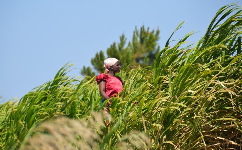 Malawi - Foto Beatriz Hernáez - Mans Unides