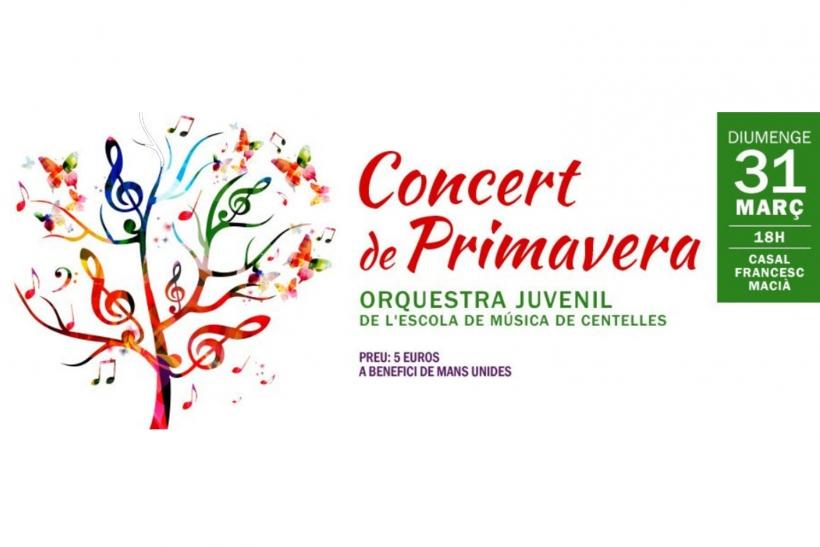 Concert de l'Orquestra juvenil de l'Escola de Música de Centelles