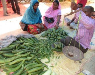 Campesinos de Sipahijala y Gomati