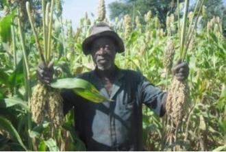 Mejora de la producción agrícola para familias pobres. Manos Unidas Valencia