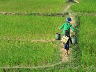 Mejora de la resiliencia de comunidades rurales frente al cambio climático