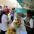 Día Mundial del Medio Ambiente 2020. Proyecto Manos Unidas en Quisqui (Perú). Foto: IDMA.