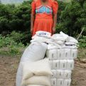 Mujer con sacos de arroz, Guatemala