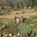 Día contra la desertificación y la Sequía. Foto:Marta Carreño en Etiopía