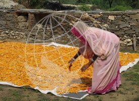 India - Alexandra Moreira/Manos Unidas