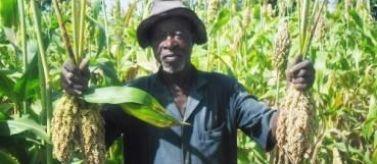 Sostenimiento agricultura familiar y mejora de seguridad alimentaria en medio rural. Foto: Manos Unidas/Juan Eguino Vergara