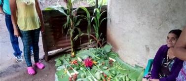 Seguretat alimentària i dignitat camperola a l'Occident d'El Salvador