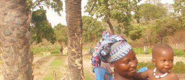 Mejora de la producción hortícola y de la nutrición familiar en las comunidades rurales de Ziguinchor