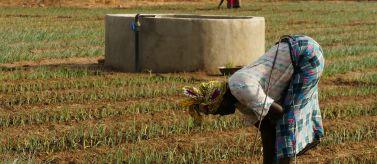 Mejora de Seguridad Alimentaria en zona rural. Foto: Manos Unidas/Mª de los Ángeles Fdez.