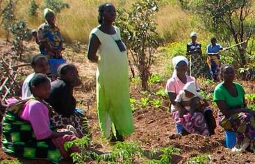 Huertos comunitarios en Kilela Balanda