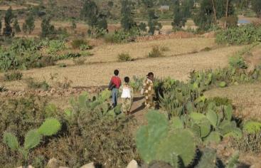 Día contra la desertificación y la Sequía. Foto: Marta Carreño en Etiopía