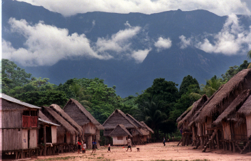 Kakataibo, Perú