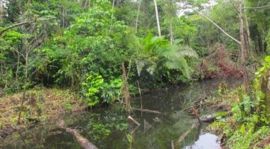 Amazonia. Foto: Manos Unidas